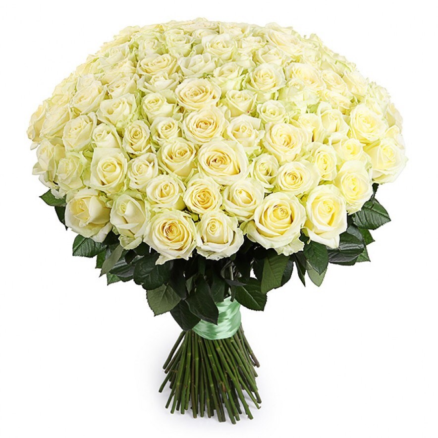 более картинку с большим букетом белых роз можете